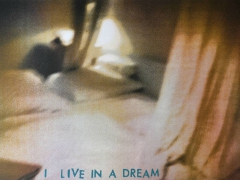 18 I life in a dream, Serigrafie, 50x70-w1500-h1500