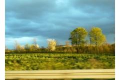 s_road-41