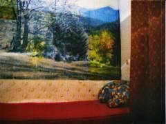 20-Fototapete-silkscreen-50x50-s